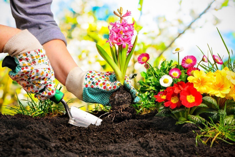 London Home Improvements – Ideas for Upgrading Your Garden